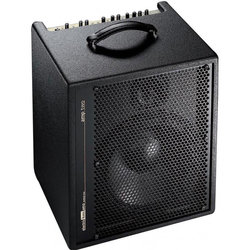 AER Amp-Two Electric Bass Combo Amp