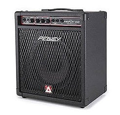View larger image of Bass Amplifier (practice) - Rental