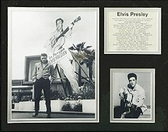 View larger image of Bio Art - Elvis, In Person