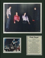 View larger image of Bio Art - Pink Floyd II