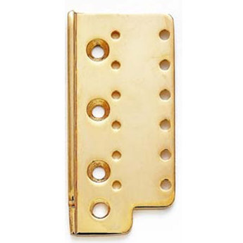 View larger image of Bridge Plate - Gold