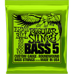 Ernie Ball Regular Slinky 5-String Nickel Wound Electric Bass Guitar Strings - 45-130 Gauge
