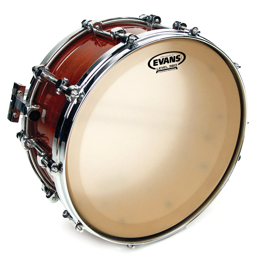 View larger image of Evans CS14SS 14 Strata Staccato 700 Series Snare Drum Head