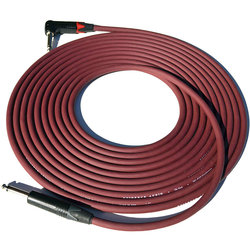 Evidence The Forte Guitar/Instrument Cable - Straight 1/4, Right Angle 1/4, 20'