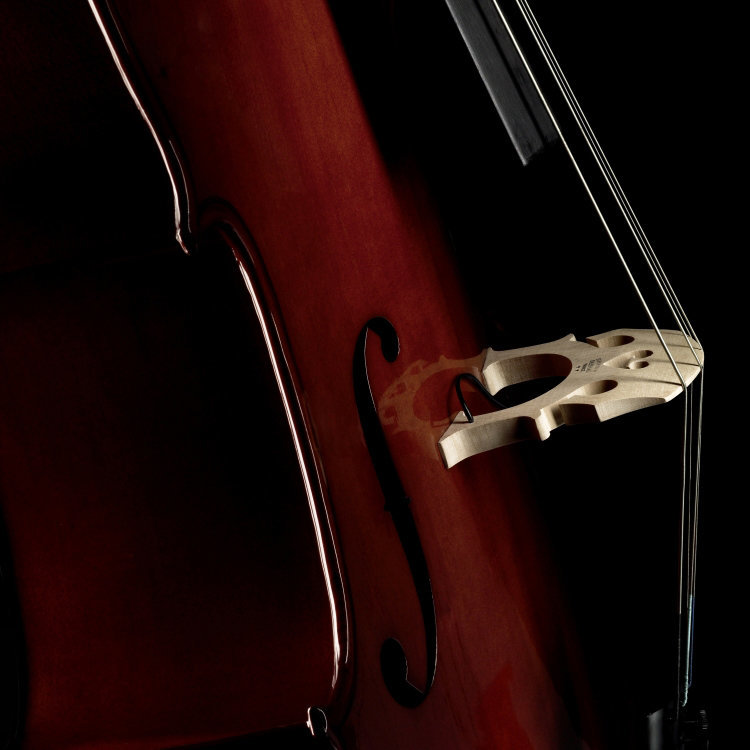 View larger image of Fishman C-200 Concert Series Cello Pickup