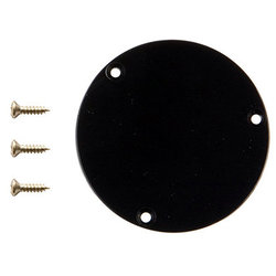 Gibson Switchplate