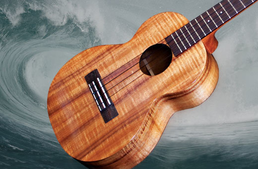 View larger image of LR Baggs Five.0 Ukulele Pickuo