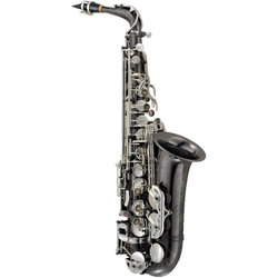 P. Mauriat PSMA-500BX Alto Saxophone with Silver Keys