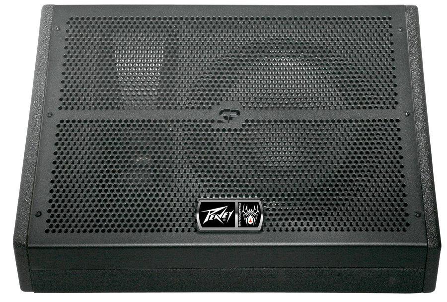 View larger image of Peavey SP 15M Monitor