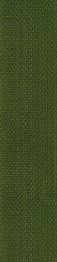 View larger image of Planet Waves PWS107 Polypropylene Guitar Strap - Green