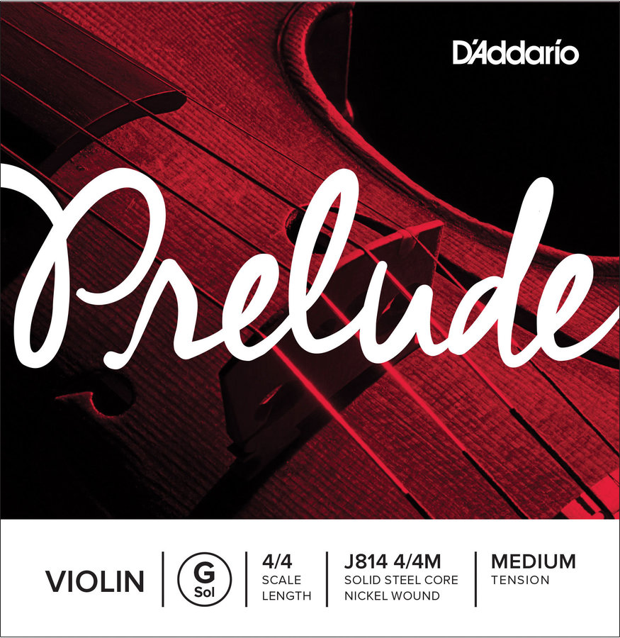 View larger image of D'Addario Prelude Violin Single G String, 4/4 Scale, Medium Tension