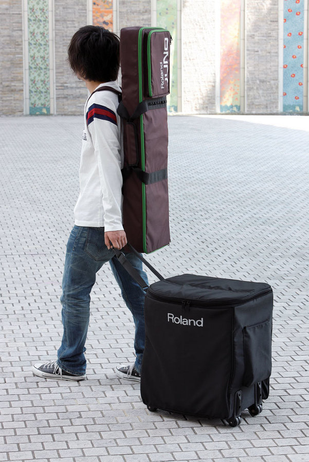 View larger image of Roland CB-BA330 Carrying Case for BA-330