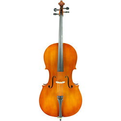 Samuel Eastman VC80T Cello Outfit - 4/4