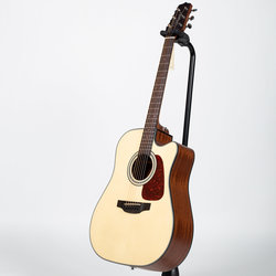 Takamine GD10CE Acoustic-Electric Guitar - Natural