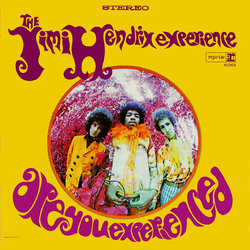 The Jimi Hendrix Experience - Are You Experienced? (Vinyl)