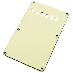 Tremolo Spring Backplate Cover for Strat - Mint Green